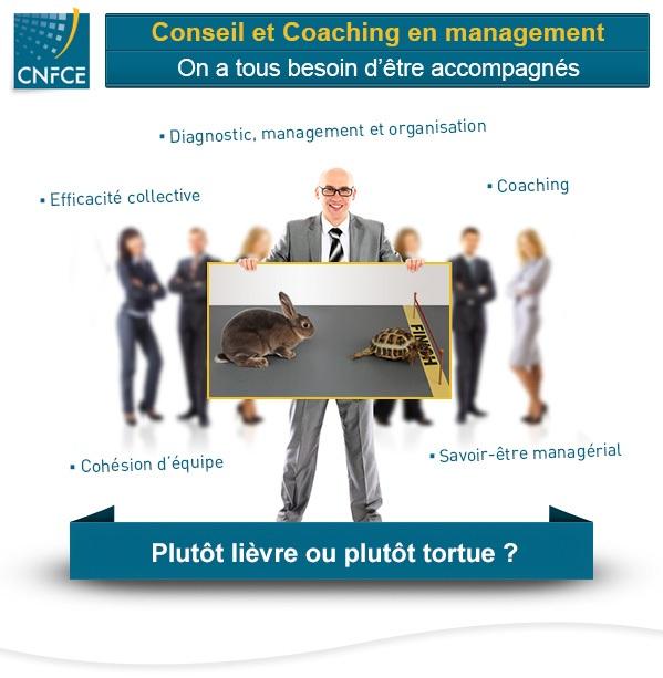 Conseil en management et organisation CNFCE